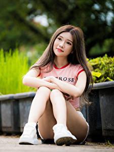 Фотография Азиатки Боке Сидящие Шатенки Миленькие Ног девушка