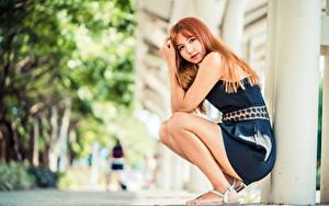 Картинки Азиатки Сидит Платье Взгляд Размытый фон Рыжих Девушки