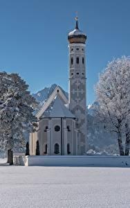 Картинки Зимние Церковь Храмы Германия Снегу Альп Бавария Дерево St. Coloman Schwangau Природа
