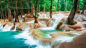 Фотографии Тропики Водопады Деревья Luang Prabang Laos Природа