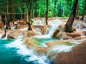 Фотографии Тропический Водопады Деревьев Luang Prabang Laos