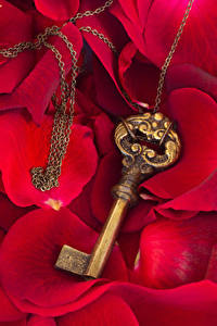 Картинка День всех влюблённых Лепестки Замковый ключ Красный