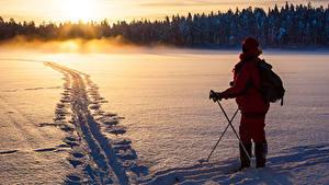 Фотографии Зимние Рассветы и закаты Леса Лыжный спорт Снег