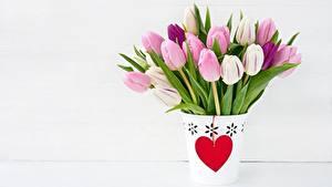 Картинки Тюльпан День всех влюблённых Сердечко Цветы