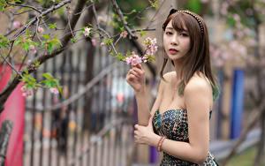 Обои Азиаты Ветка Платье Рука Шатенки Смотрят девушка
