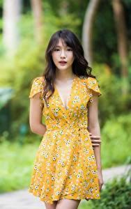 Обои Азиатка Размытый фон Платье Взгляд Брюнетка молодая женщина