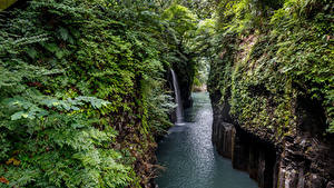 Фото Япония Реки Водопады Скалы Кусты Takachiho Gorge Природа