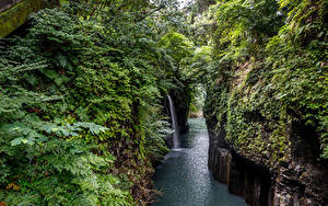 Фото Япония Реки Водопады Скала Кусты Takachiho Gorge