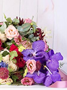 Фото Букет Орхидеи Эустома Лютик Доски цветок