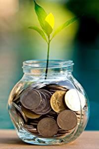 Картинки Монеты Растения Банка