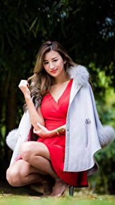Картинка Азиатки Боке Сидящие Платья Пальто Шатенки Смотрит девушка