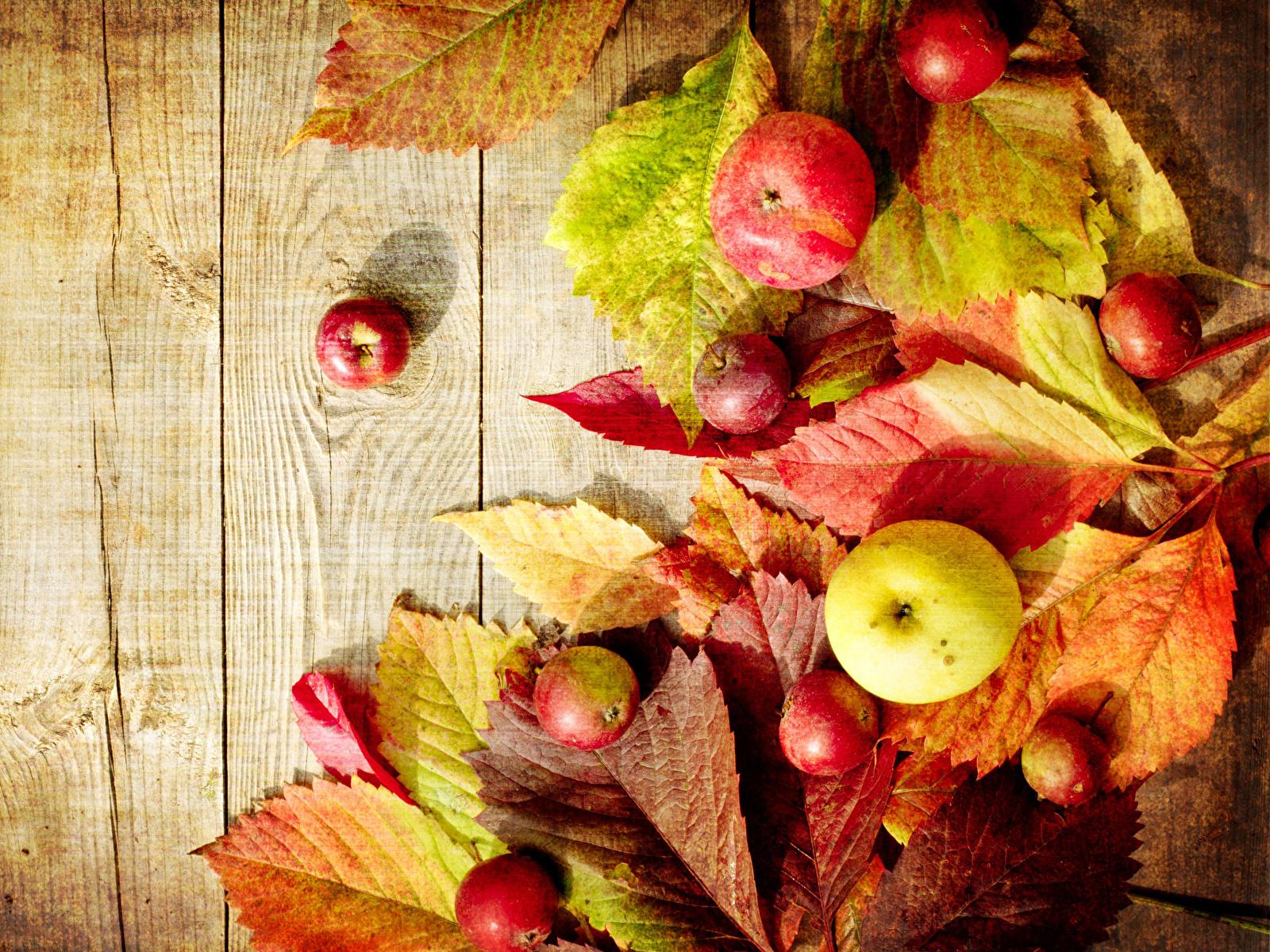 Картинки Листья Осень Яблоки Продукты питания Доски 1600x1200 лист Листва осенние Еда Пища
