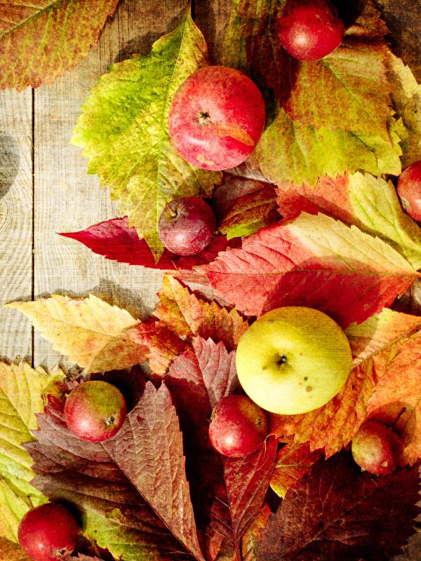 Картинки Листья Осень Яблоки Продукты питания Доски 600x800 для мобильного телефона лист Листва осенние Еда Пища