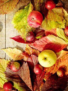 Картинки Осень Яблоки Доски Листва