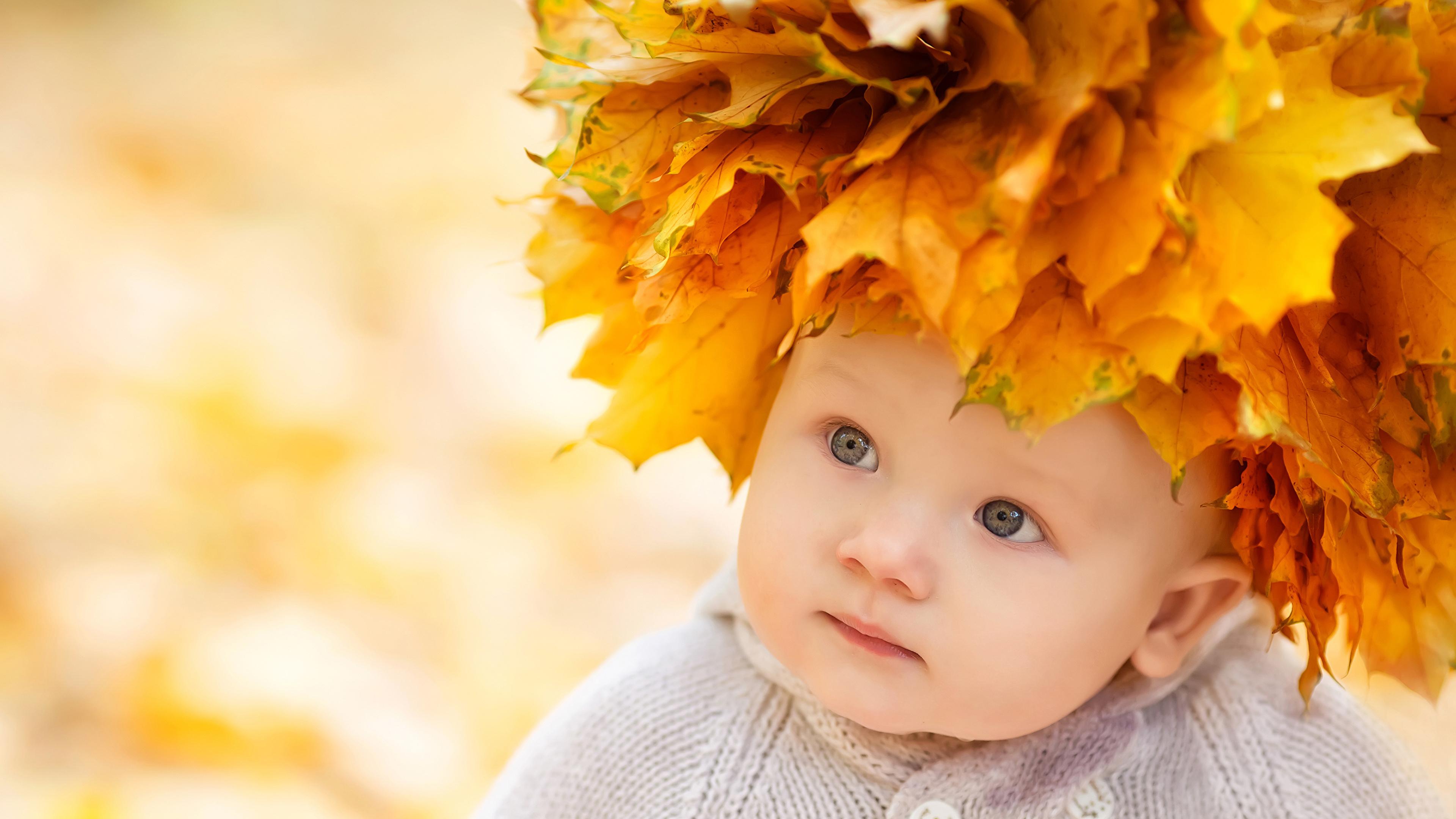 Картинки младенца Листва Ребёнок Осень смотрят 3840x2160 Младенцы младенец грудной ребёнок лист Листья Дети осенние Взгляд смотрит