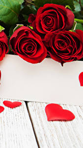 Фотография День всех влюблённых Роза Доски Шаблон поздравительной открытки Красный Сердца цветок