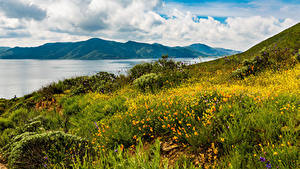 Фотография США Горы Берег Калифорнии Трава Hemet Природа