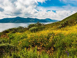 Фотография США Горы Берег Калифорнии Трава Hemet
