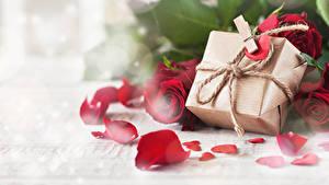 Фотография День всех влюблённых Розы Подарки Лепестки Прищепки Сердце Цветы