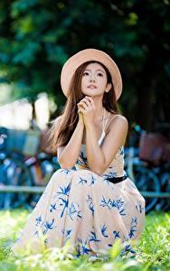 Картинки Азиатка Боке Платья Шляпе Шатенка Руки Траве Сидящие Девушки