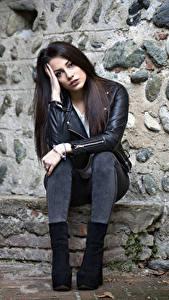Обои Поза Сидит Джинсов Куртке Рука Шатенки Carlotta молодые женщины