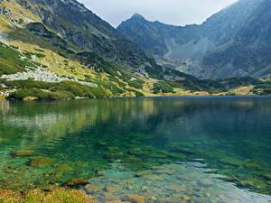 Картинка Словакия Гора Озеро Tatras