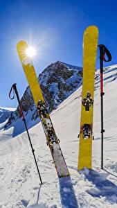 Фотография Зимние Лыжный спорт Снег Солнце Природа Спорт