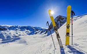 Фотография Зимние Лыжный спорт Снег Солнце Спорт