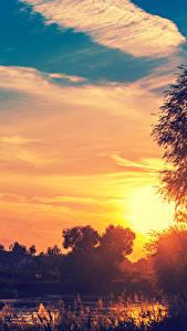 Фотография Рассветы и закаты Пруд Небо Вечер Облака Природа
