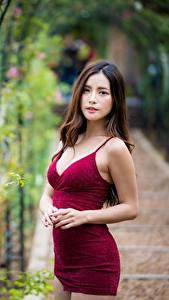 Фотографии Азиаты Платье Боке Смотрят Шатенки Модель девушка