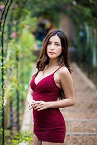 Фотографии Азиаты Платье Боке Смотрят Шатенки Модель