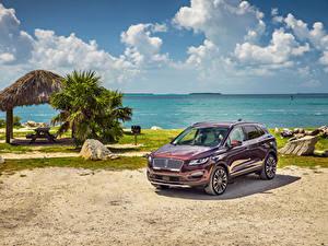 Картинка Lincoln Бордовые Металлик 2019 MKC Black Label Автомобили