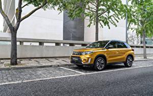 Фотография Suzuki - Автомобили Желтый Металлик Золотой 2018 Vitara Worldwide Автомобили