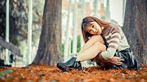 Фотография Азиатки Позирует Сидящие Юбки Свитере Ног Шатенки Смотрит