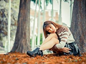 Фотография Азиатки Позирует Сидящие Юбки Свитере Ног Шатенки Смотрит девушка