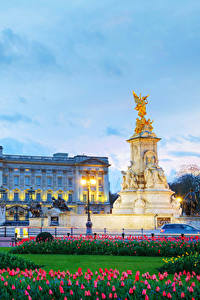 Картинки Англия Вечер Памятники Тюльпан Небо Лондон Дворца Уличные фонари Buckingham palace