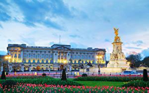 Картинки Англия Вечер Памятники Тюльпаны Небо Лондон Дворец Уличные фонари Buckingham palace