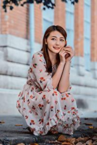 Фотография Азиатки Сидящие Платья Рука Шатенки Миленькие