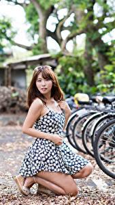 Обои Азиатка Шатенки Размытый фон Платье Велосипеды молодые женщины