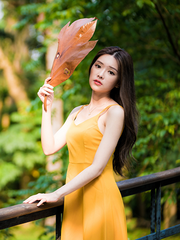 Картинка Листья боке молодая женщина азиатки рука Взгляд Платье 600x800 для мобильного телефона лист Листва Размытый фон девушка Девушки молодые женщины Азиаты азиатка Руки смотрит смотрят платья