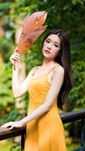 Картинка Азиатки Листья Платье Рука Взгляд Боке