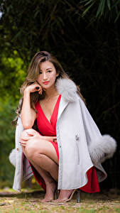Фото Азиатки Сидящие Платья Шатенки девушка