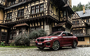 Фотография BMW Бордовый Металлик 2018 X4 xDrive25d M Sport Worldwide Авто