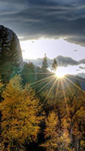 Фотография США Парк Горы Рассвет и закат Осень Йосемити Деревья Лучи света Природа