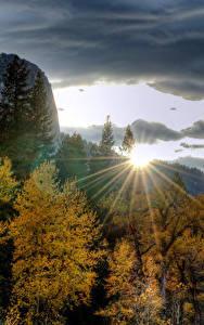 Фотография США Парк Горы Рассвет и закат Осень Йосемити Деревья Лучи света
