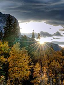 Фотография США Парки Горы Рассветы и закаты Осень Йосемити Деревья Лучи света Природа