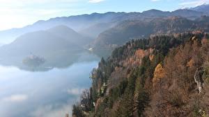 Обои Словения Осень Леса Горы Озеро Туман Bled