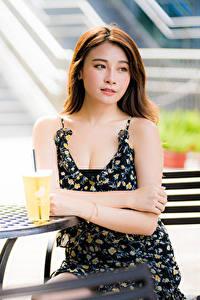 Фотография Азиатки Боке Сидящие Кафе Платья Шатенки Стола девушка