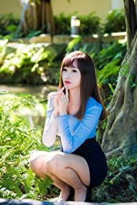 Фото Азиаты Шатенка Боке Сидит Рука Ног Кустов молодые женщины