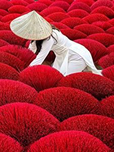 Обои для рабочего стола Поля Красная Шляпы Природа Девушки
